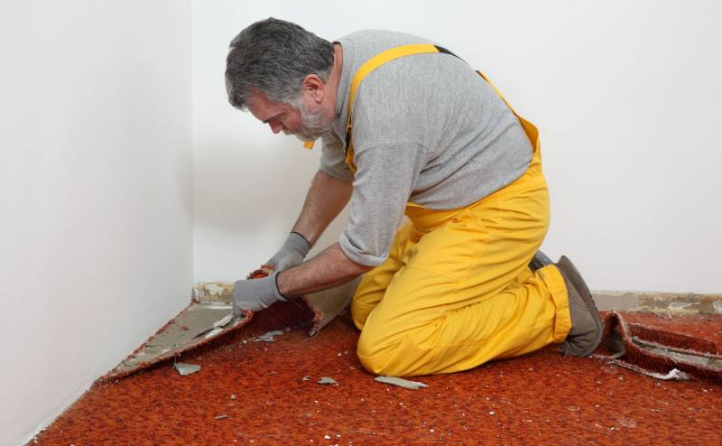 Home and property owners frequently renovate living spaces. This can include anything from replacing an old roof, changing the paint color, ...